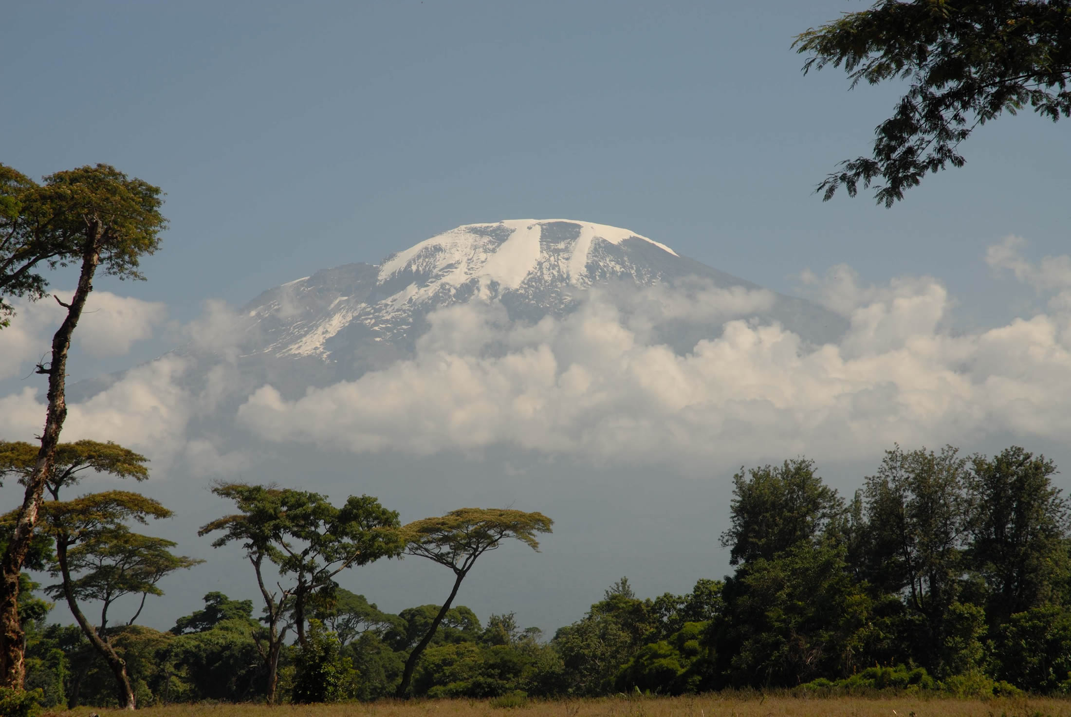 Kilimanjaro with Snow on top